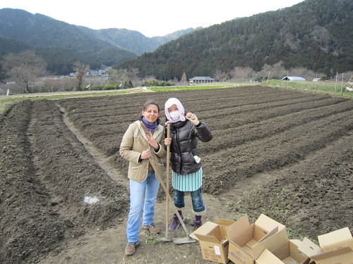 CSA (Community Supported Agriculture)