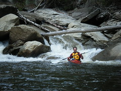 Chip running the rapids