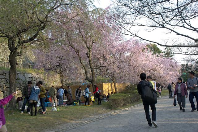 2012-kyushu-272