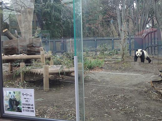 ueno_zoo_1