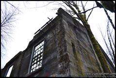 Abandoned Saw Mill Near Courtenay, BC