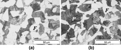 Initial microstructures for C-Mn steels.