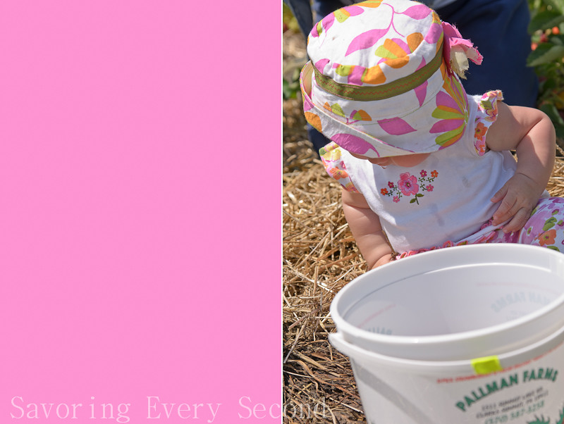 Strawberry Part 2-010-Edit.jpg