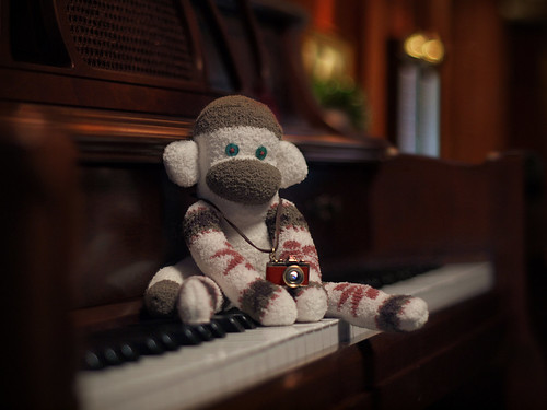 Sockmonkey with Camera