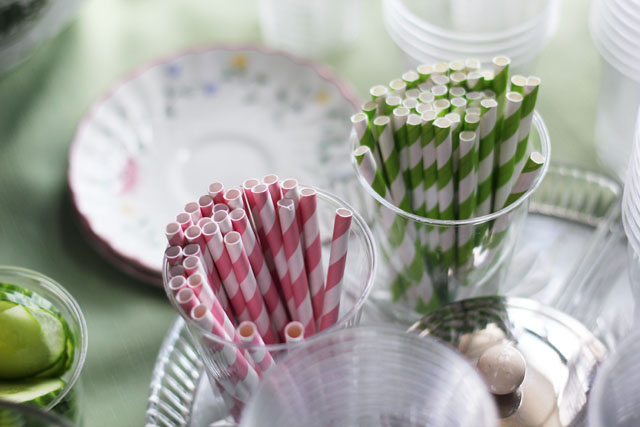 Wish Magazine Launch striped pink and green straws