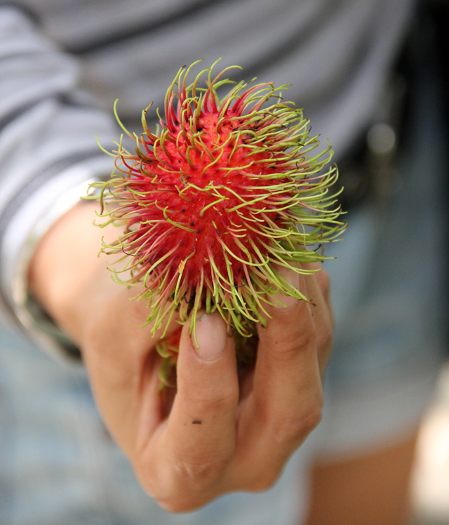 Beautifully colored rambutan...