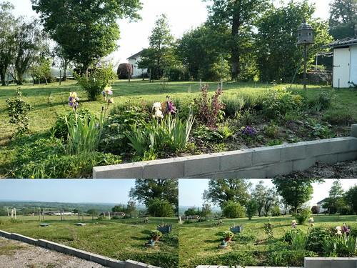 Garden 24th May 2012