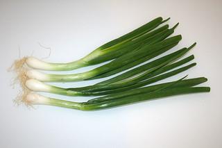 03 - Zutat Frühlingszwiebeln / Ingredient spring onions