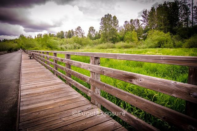 Juanita Bay Park - Kirkland, WA