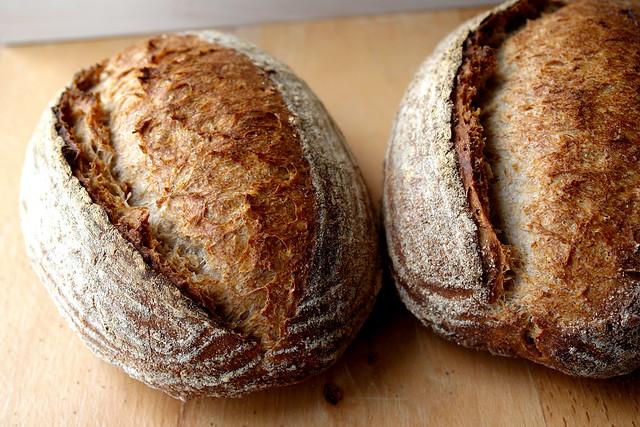 paine cu 3 maiele 0105