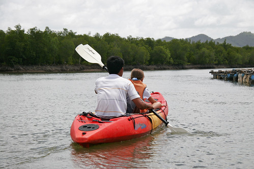 Kayak on mangrove river, Phuket