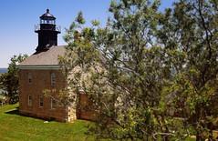 Oldfield Lighthouse & Tree