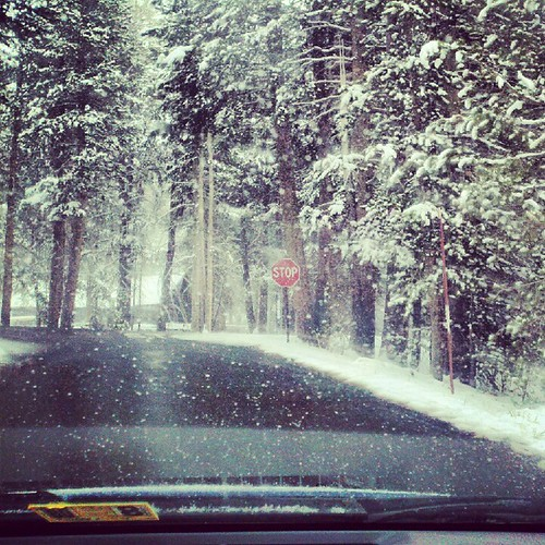 Snow storm in yosemite