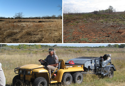 Shortgrass Prairie Restoration