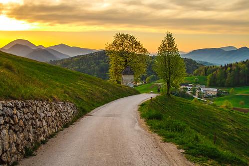 road morning light sunrise view slovenia gora limbarska