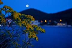 Croatia Full Moon