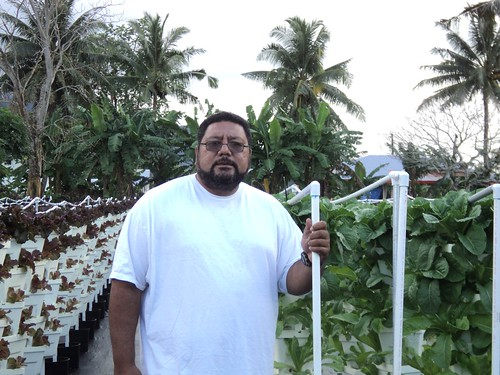 Edward Avegalio transformed his farm into a hydroponic haven that expanded his acreage and made the land accessible to his needs.
