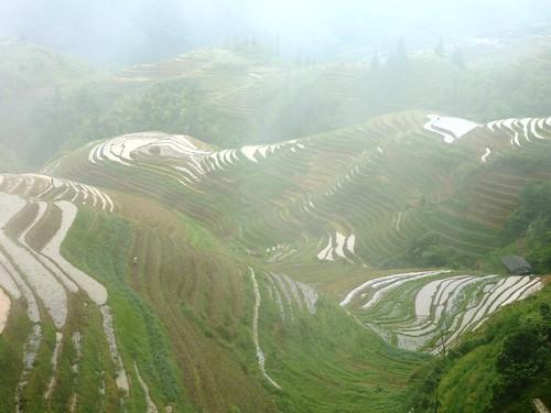 C-Guangxi-Pingan-Terrasse des 7 etoiles (75)