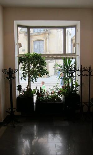 Ruukkukasvit by Anna Amnell