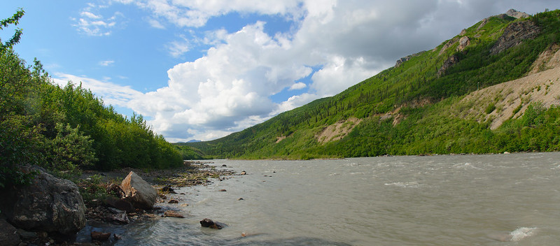 Nenana upriver view