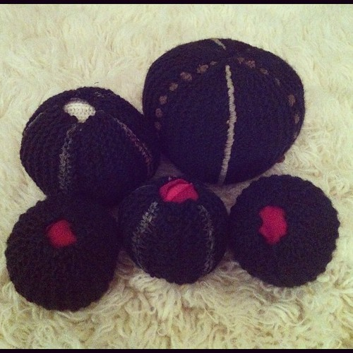 Some anemone-like knitted sculptures I made for the @makerfaire_van Yarn Party.