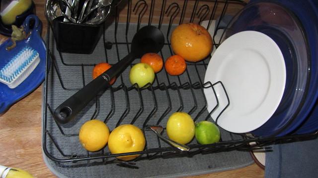 IMG_8608 citrus in dish drainer