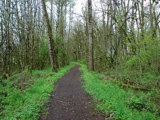 Trail in Ankeny Wildlife Refuge