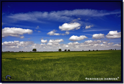 blue sky españa cloud paisajes naturaleza white color verde green primavera blanco nature colors grass azul clouds canon landscape landscapes spring spain natura paisaje colores cielo nubes campo llanos nube cuenca horizonte lamancha llano mancha hierba castillalamancha llanura cauntry 450d manchuela casasimarro antoniozamora manchuelaconquense