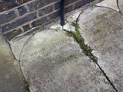 "A flat slab of stone with a rounded top, laid into a path with other similar stones.  The words engraved into the slab are very worn down, but the name ""John Squire"" can just be made out at the top, along with the date ""20th of 10th M[something]."