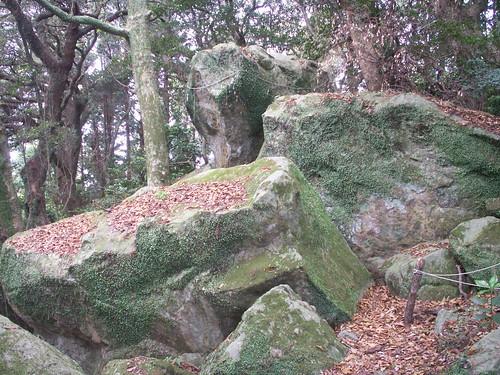 19 阿波々神社(静岡県)