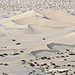 Mesquite Dunes / Death Valley by Ron Wolf