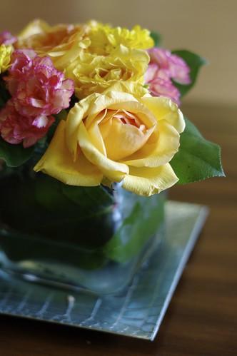 Brightful Blooms