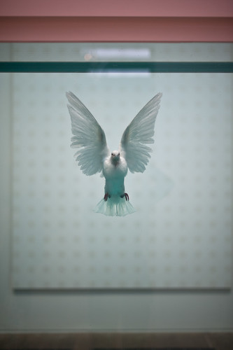 Damien Hirst @ Tate Modern by H A P P Y F A M O U S A R T I S T S