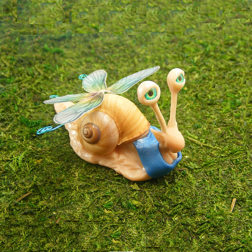 dragonfly fairy snail