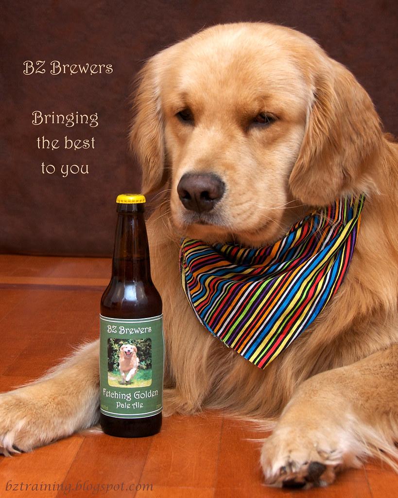 BZ Brewers