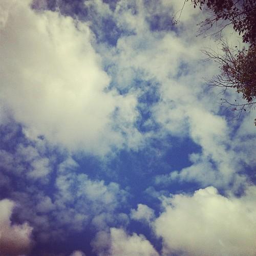 103/366 : sky