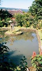 View from Teak Villa from Munduk Cultural Villas