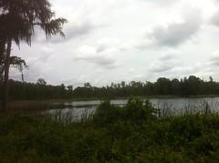 Some Lake