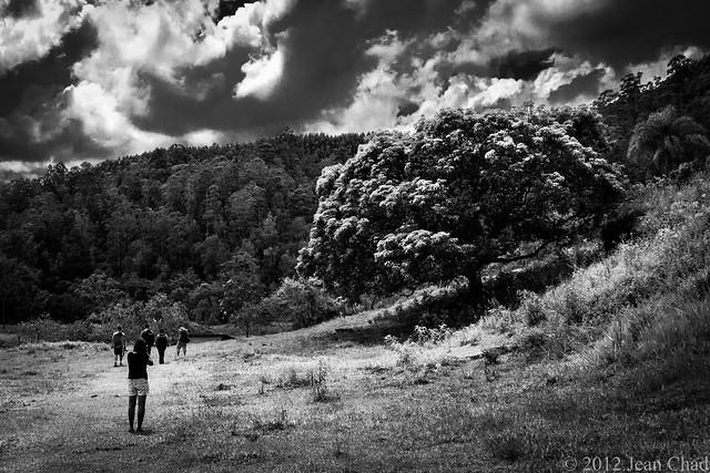 Fotógrafos e a natureza