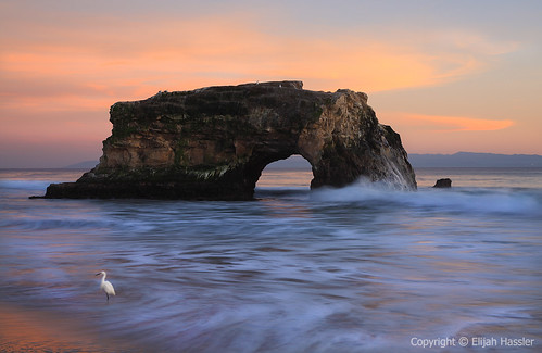Egret and Natural Arch by right2roam