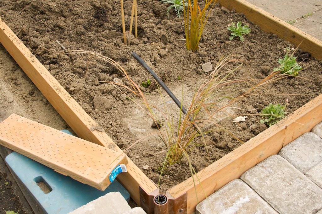 irrigation  1588