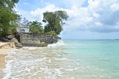 Barbados-2MY_2908