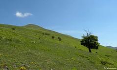 Monte Lieto (Sibillini)