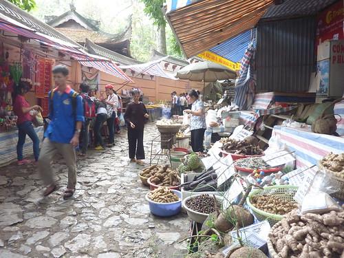 Hanoi 12-Perfume Pagoda (141)