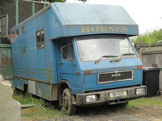 1989 MAN/VW Horsebox