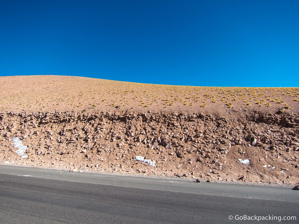 Despite the harsh environment, small tufts of grass manage to grow in the Atacama Desert. Closer to the road, you can still see some snow.