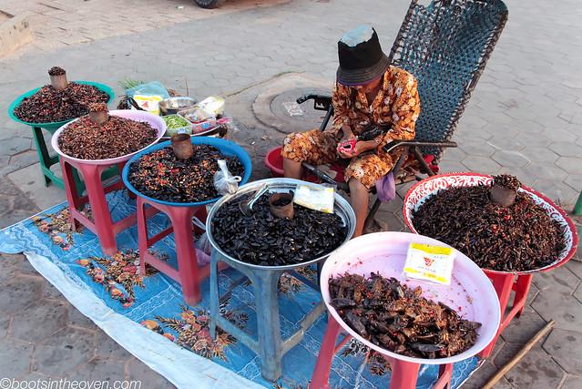 Selling Snackbugs