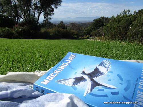 dailyhelen_lawn by dailyhelen