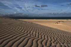 Geometría en la arena