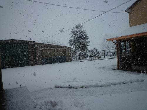 Nevicata con i fiocchi!!! by meteomike